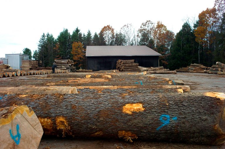 Log buying