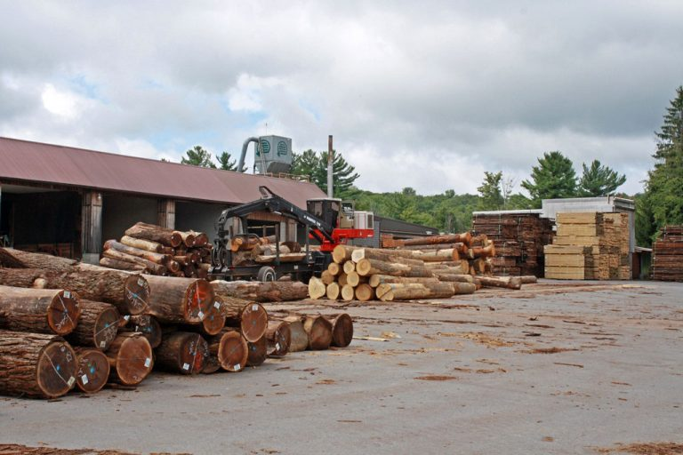 Wide shot of the log yard