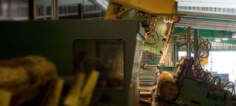 Sawmill process shot