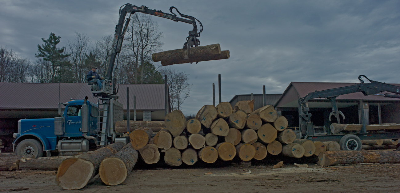 Moving logs in the log yard