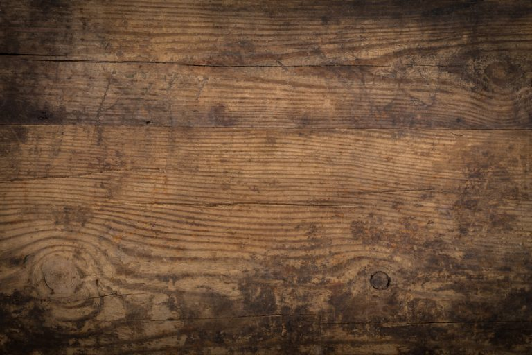 Hardwood Vs. Softwood: Understanding The Difference, Part 1