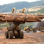 Looking For The Right Lumber Mill?