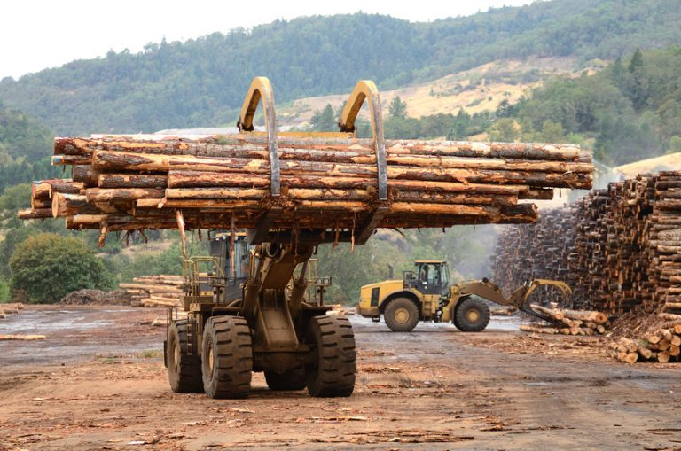 Looking For The Right Lumber Mill? Make Sure They Carry These 4 Products